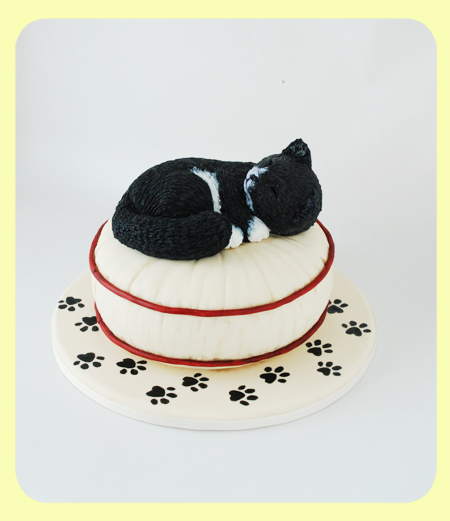 Cake_CatOnPillow_01