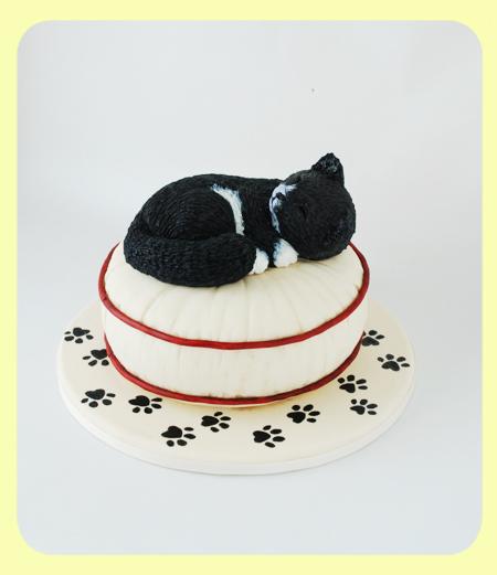 Cake_CatOnPillow_01