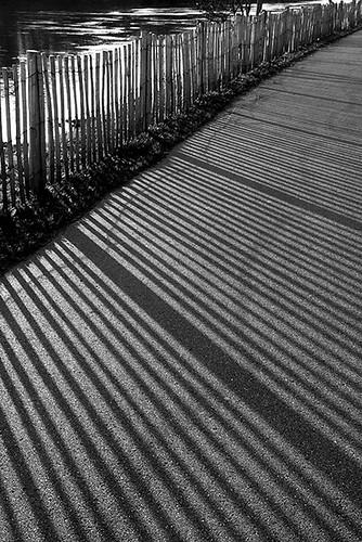 Les lignes