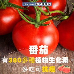 番茄有380多種植物生化素,多吃可抗癌