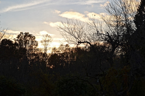 photos photography md croom missnicole sunset silhouette views maryland