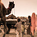 Small photo of The Meager Existence of the Camel Herders