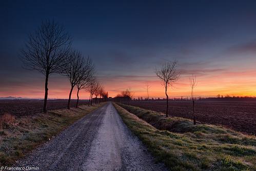 italy sunrise canon dawn momo italia alba piemonte ricefield risaia novara canoneos60d tamronsp1750mmf28xrdiiivcld