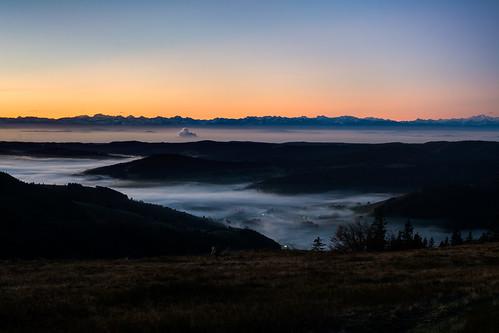 autumn black fog forest sunrise nebel sonnenaufgang