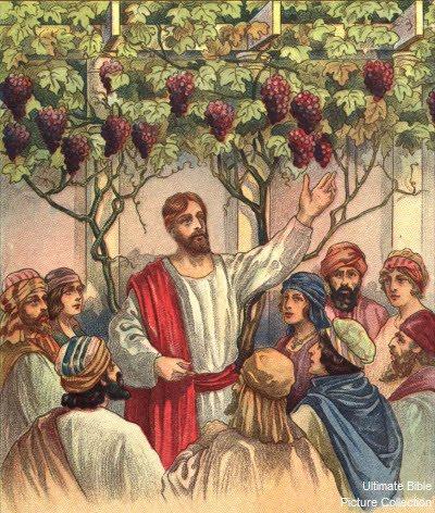 CHÚA NHẬT XXV THƯỜNG NIÊN A (Mt 20,1 -16a)