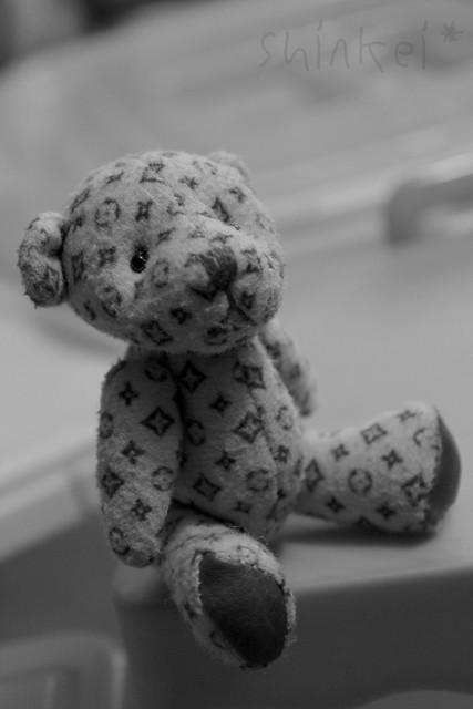 The Bear Named Bear
