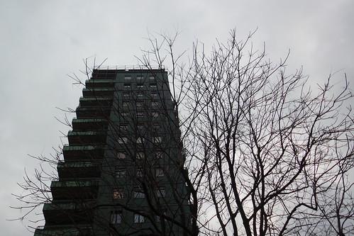 Il grigio della natura e dell'architettura