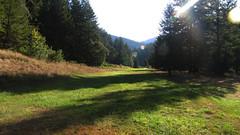 Zane Grey Cabin on the Rogue River