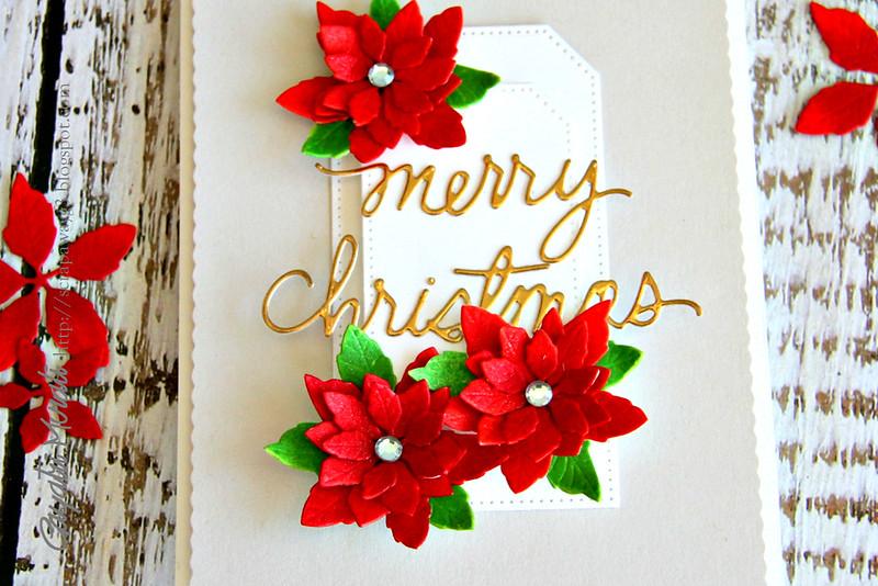 Merry Christmas closeup1