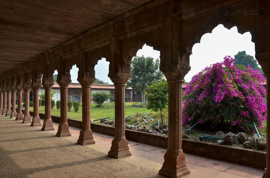 Taj Mahal-2424