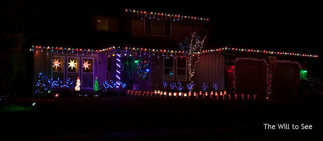 2014 lights.jpg