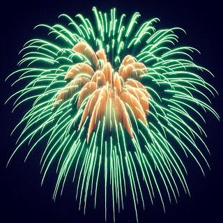 Pistil Firework Effect