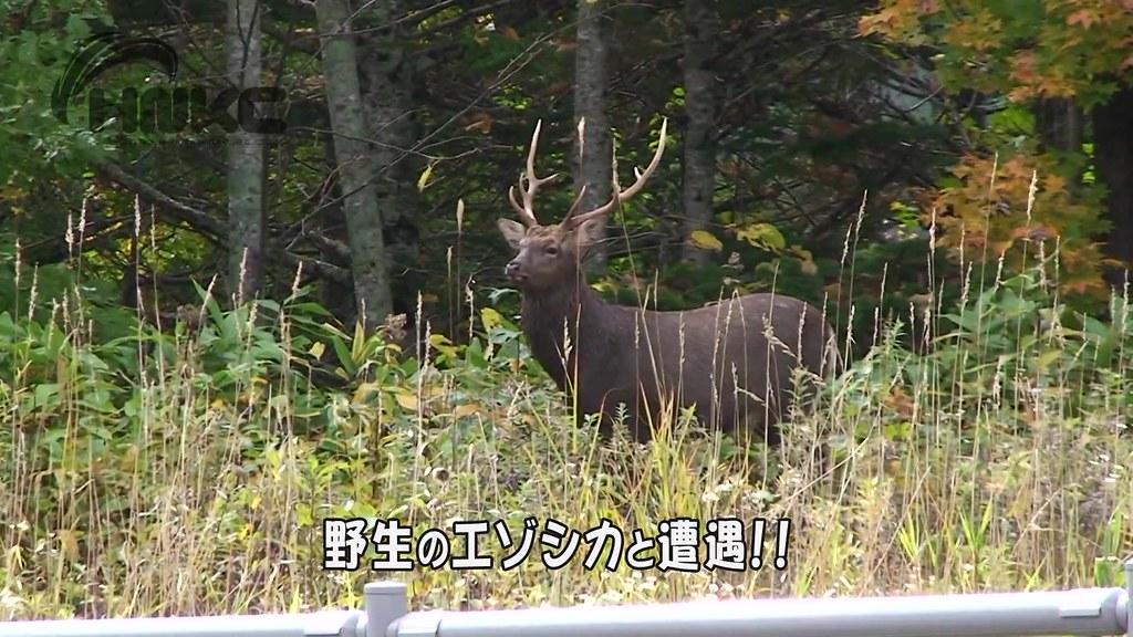 北海道單車行第二天.mp4_20141224_025659.984