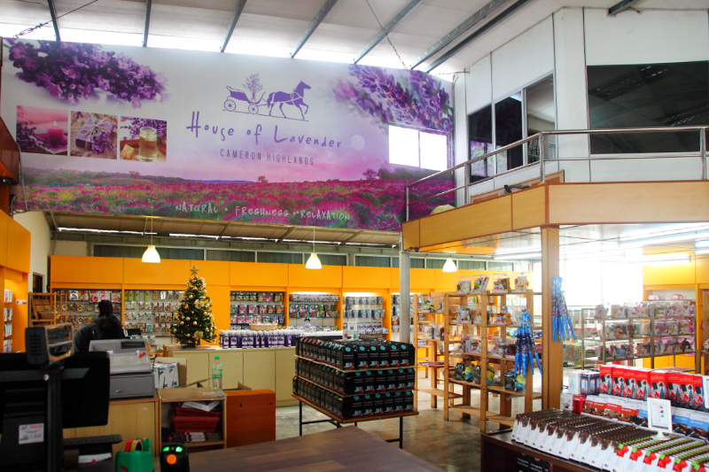 House-of-Lavender-Shop