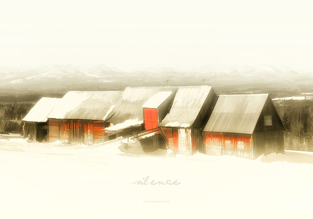 patrice-photographiste - silence 2015