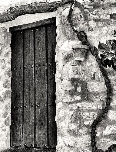 La parra, la puerta y la maceta.
