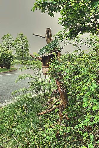 So sieht Thüringer Landleben aus? Geht's wirklich nach unter?