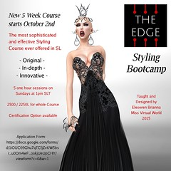 Edge Styling Bootcamp October Course Advert