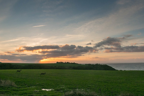 sunset sky field clouds denmark sonnenuntergang feld meadow wiese wiesen himmel wolken dänemark danmark limfjord jutland jylland jütland ranum regionnordjylland
