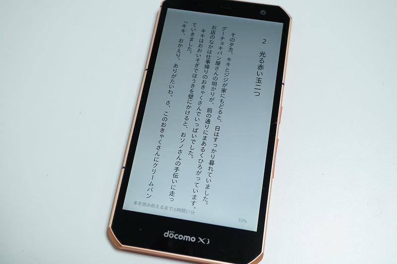 DSC07300.JPG