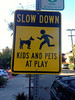 Slow Down Kids and Pets at Play Berkeley Oct 2014