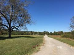 Alabama2014-9