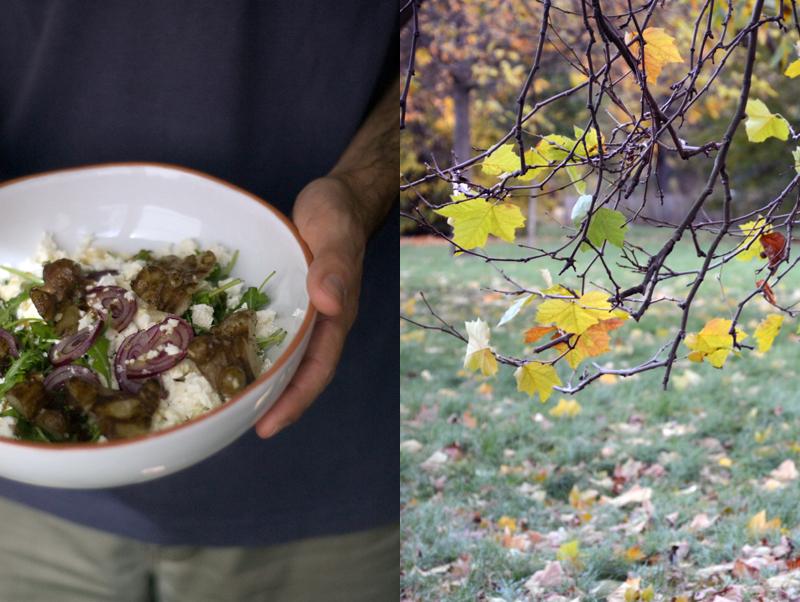Salada de Outono