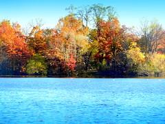Lake. Autumn