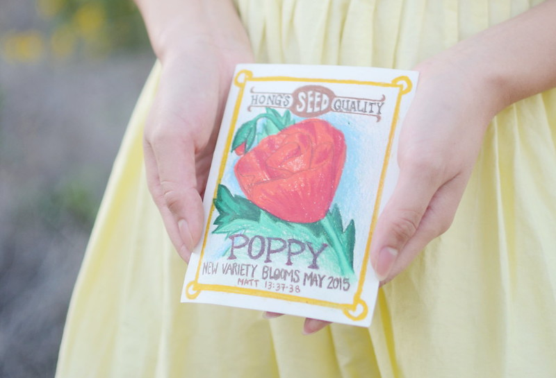 seed packet pregnancy announcement