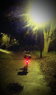 Lights, bikes, Woodlawn Park.