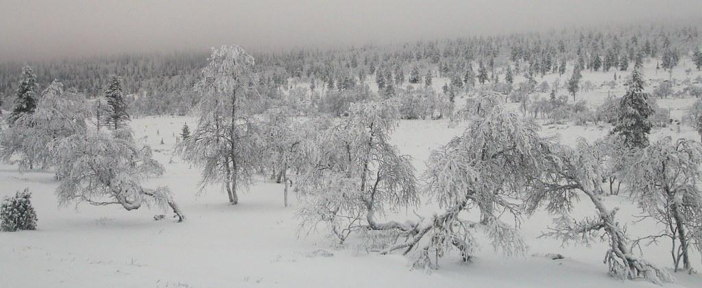 Finland017