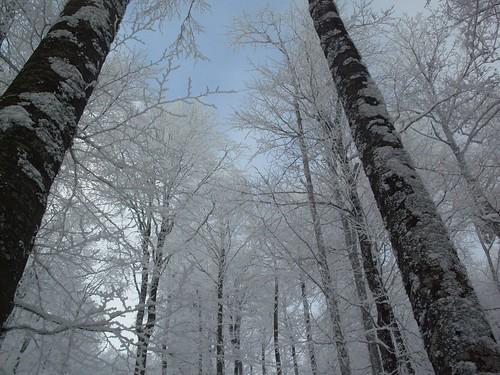 slovenia neve slovenija inverno montagna scialpinismo cristianodemarch