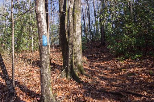 Tom Miller Trail - 2