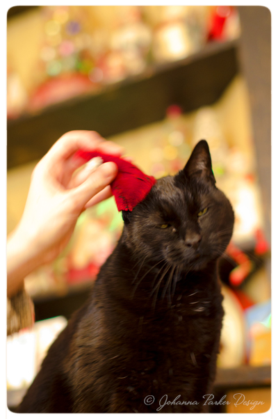 Merry-Christmas-Jack-hat-adjustment