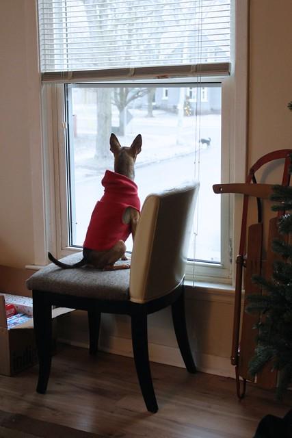 Diy Window Seat Storage Bench Behr Paint New Year New