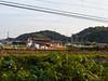 Photo:2014-11-23_IMGP1138.jpg By ayagane