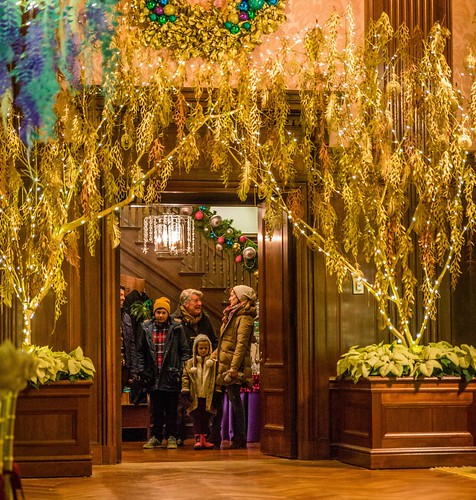 Cut Paper Vines at Longwood Christmas 2014