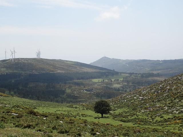 Torre de Inxerto en la Ruta Alto das Torres e Alto da Lagoa