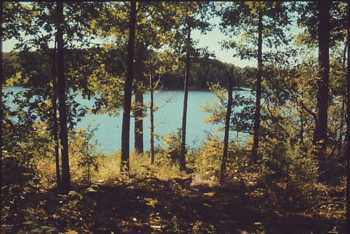 trees lake film nature water analog 35mm canon landscape outdoors 1 illinois ae1 hiking crab slide orchard southern positive ae siu carterville instagramapp