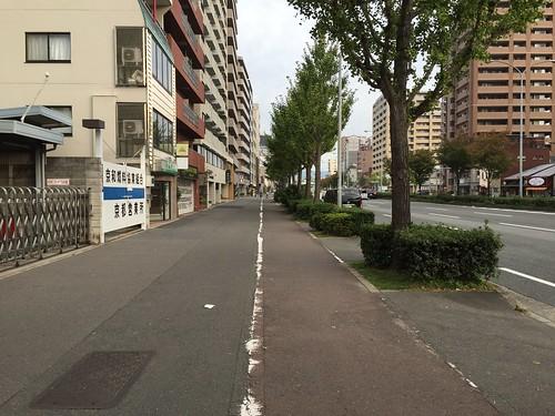 京都の自転車道 #1