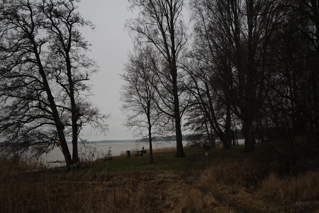 Hamarin ranta