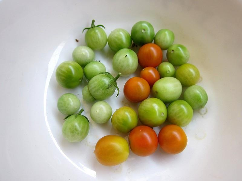 cherry rajcinky2