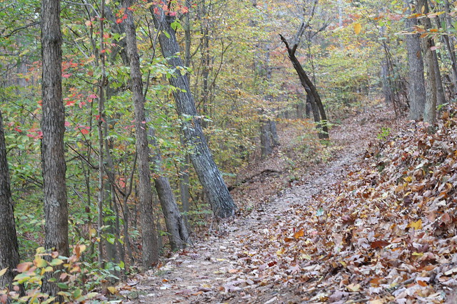 James River State Park Fall 2014 (349)