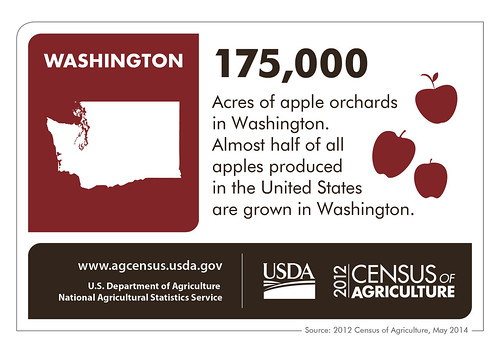 With your senses set, imagine the smell of acres of apples.  Anticipate their crunch and sweet taste, or think of a baking apple pie – and then thank Washington State because they produce almost half of the apples grown in the United States.  Check back next week for another state highlight from the 2012 Census of Agriculture!