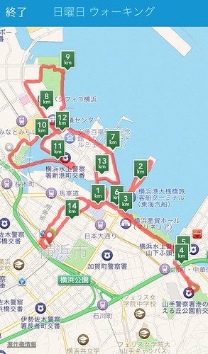 20141116_yokohama-run4