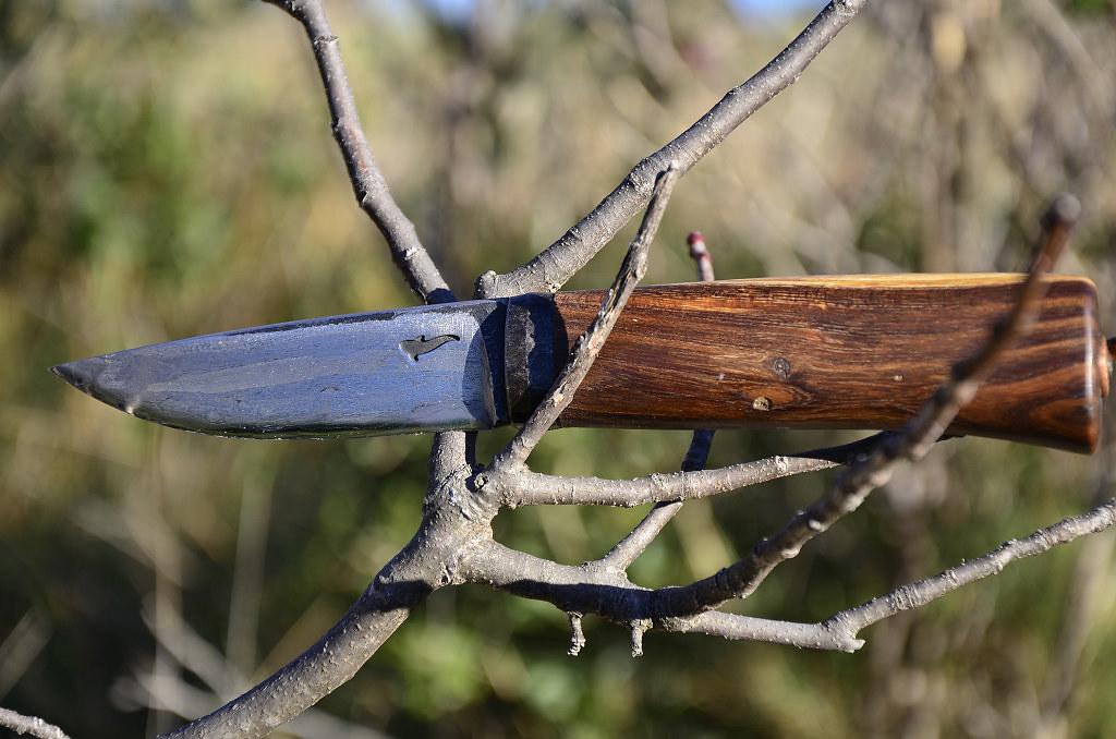 Des traces de couteaux dans les bois 15645194063_aeedcc82f6_b
