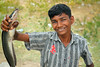 Indian Village Boy Holding Channa striata