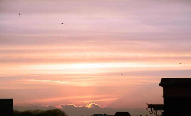 Een zonsondergang