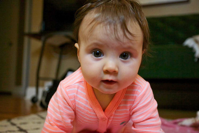 4cbefcb8185e Six Months of Motherhood  A Baby Update  and My Favorites in Baby ...