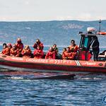 Photo Croisières aux baleines Essipit (Les Bergeronnes)